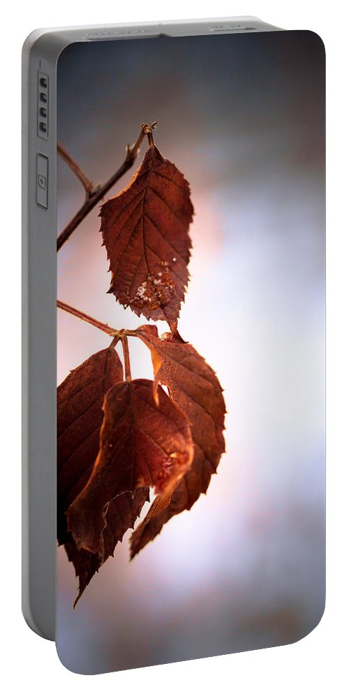 Leaves Portable Battery Charger featuring the photograph Before We Fall by Shane Holsclaw