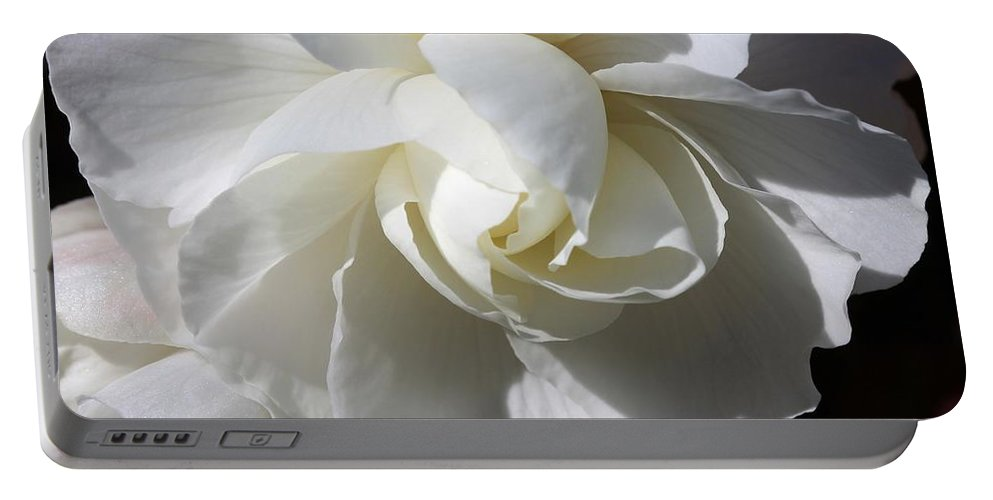 Begonia Portable Battery Charger featuring the photograph Begonia Named Nonstop Apple Blossom by J McCombie