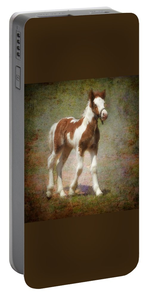 Gypsy Horse Portable Battery Charger featuring the mixed media Bella Rose by Fran J Scott