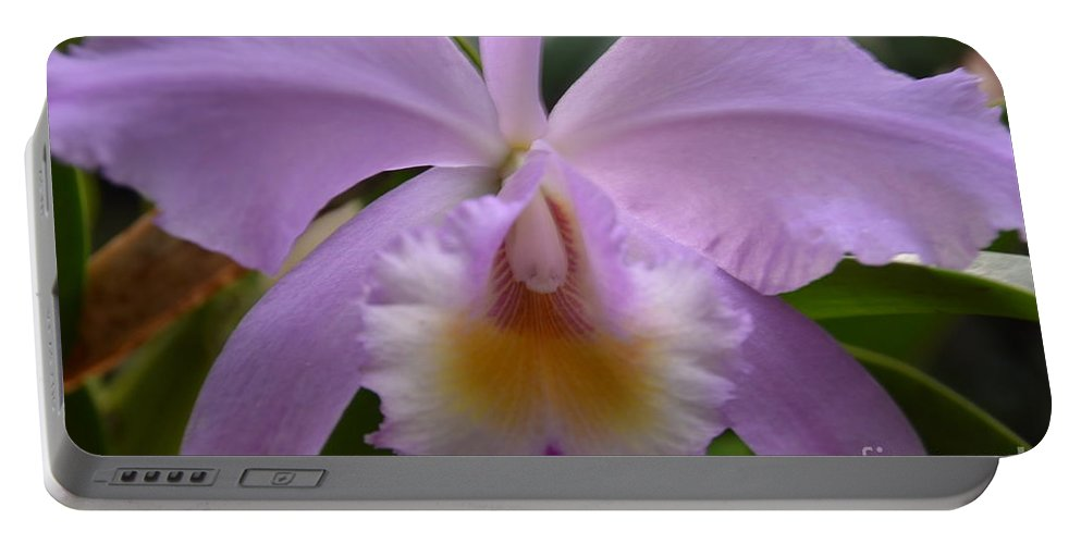 Belle Isle Portable Battery Charger featuring the photograph Belle Isle Orchid by Randy J Heath