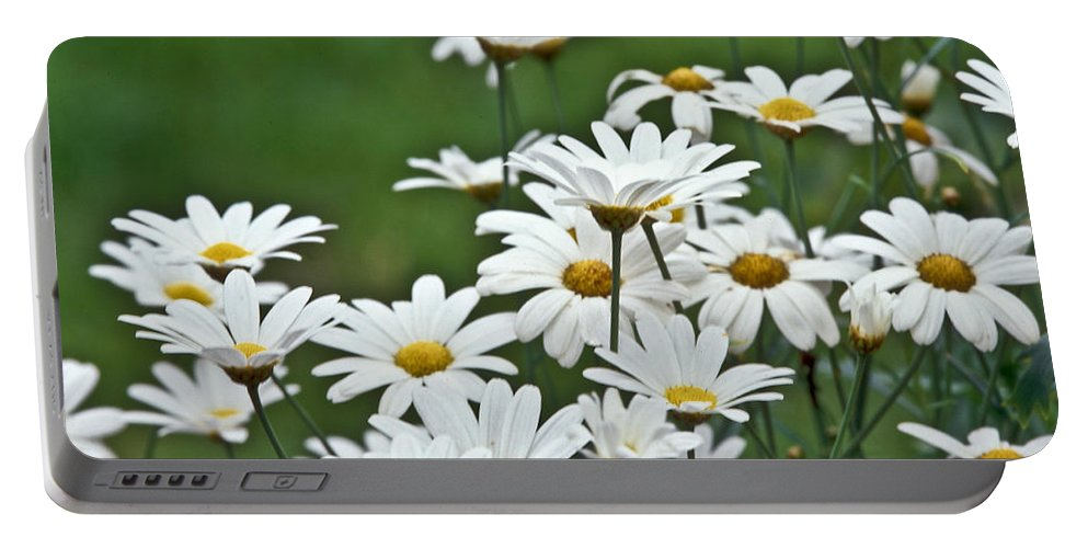 Heiko Portable Battery Charger featuring the photograph Bellis Perennis by Heiko Koehrer-Wagner