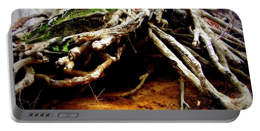 Moss Portable Battery Charger featuring the photograph Below by Michelle Calkins