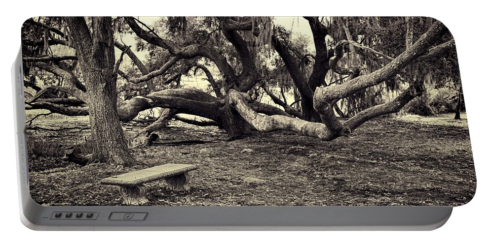 Trees Portable Battery Charger featuring the photograph Bench And Trees Bw by David Arment