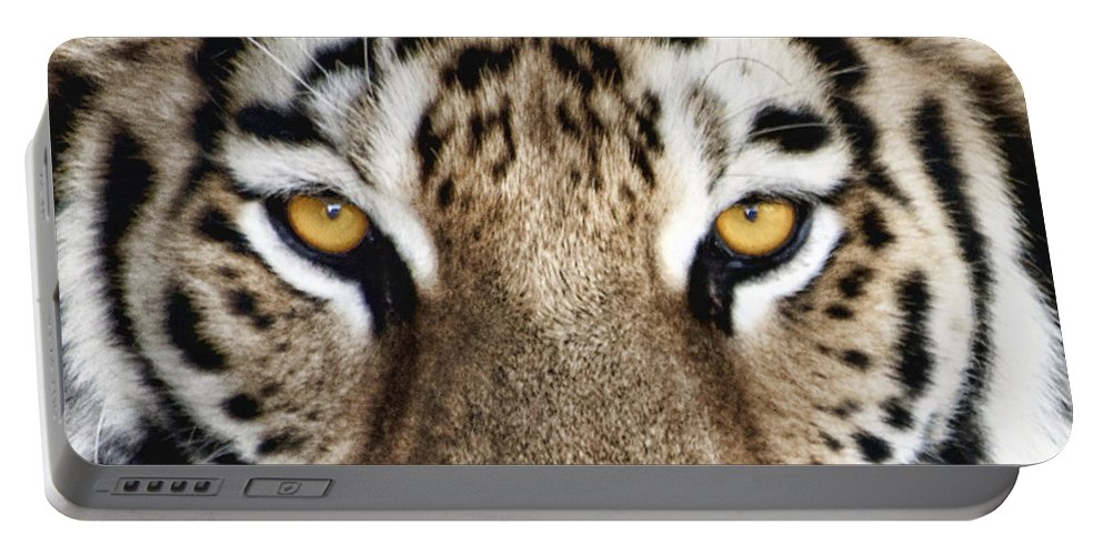 Tiger Portable Battery Charger featuring the photograph Bengal Tiger Eyes by Tom Mc Nemar