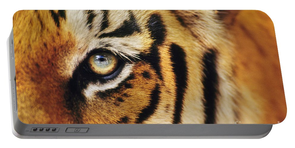 Animal Behavior Portable Battery Charger featuring the photograph Bengal Tiger Face by Frans Lanting MINT Images