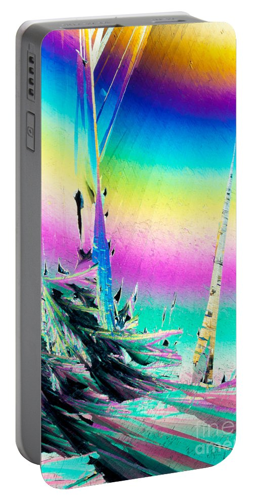 Acid Portable Battery Charger featuring the photograph Benzoic Acid Microcrystals Coloful Abstract Art by Stephan Pietzko