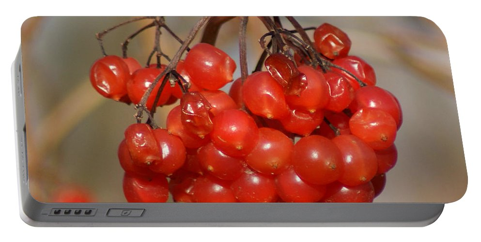 Autumn Portable Battery Charger featuring the photograph Berries by Carol Lynch