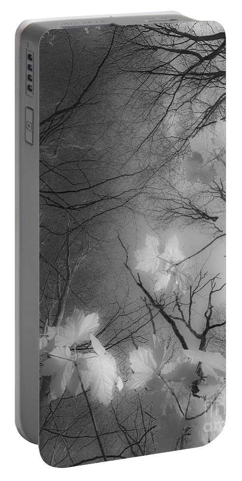 Between Black And White Portable Battery Charger featuring the photograph Between Black And White-02 by Casper Cammeraat