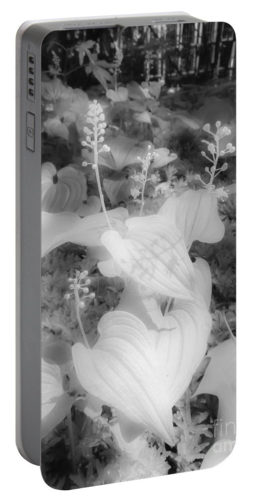 Between Black And White Portable Battery Charger featuring the photograph Between Black And White-12 by Casper Cammeraat