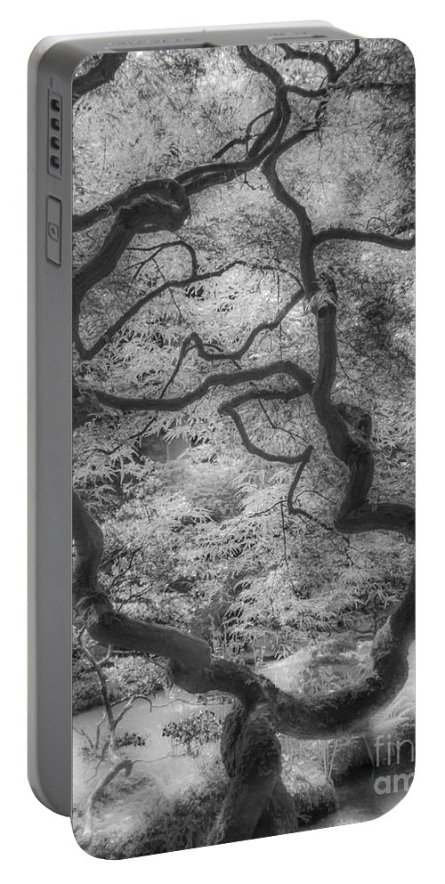 Between Black And White Portable Battery Charger featuring the photograph Between Black And White-16 by Casper Cammeraat