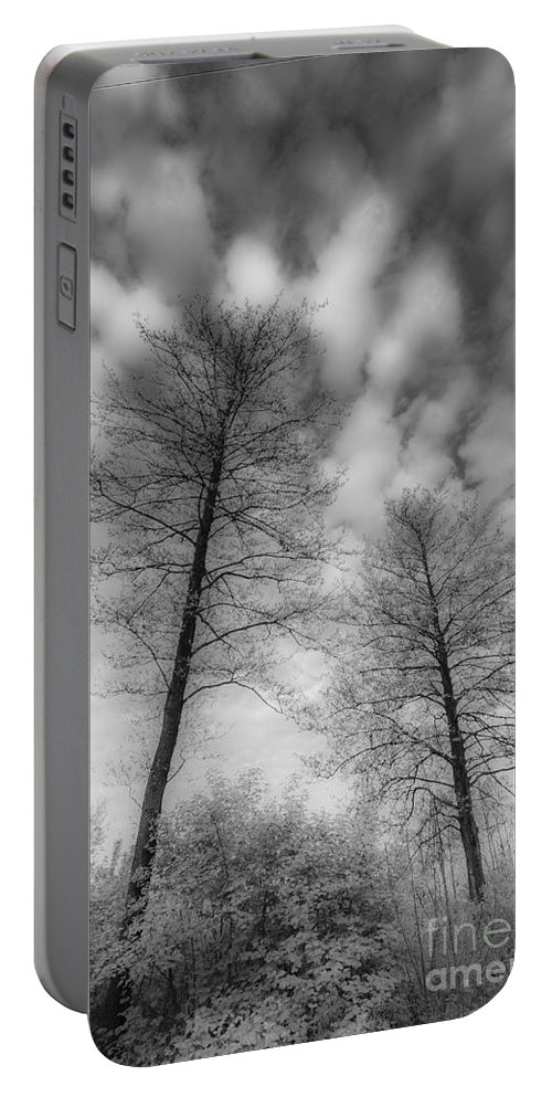 Between Black And White Portable Battery Charger featuring the photograph Between Black And White-30 by Casper Cammeraat