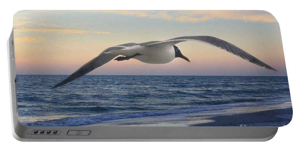 Seagull Portable Battery Charger featuring the photograph Between by Irina Davis