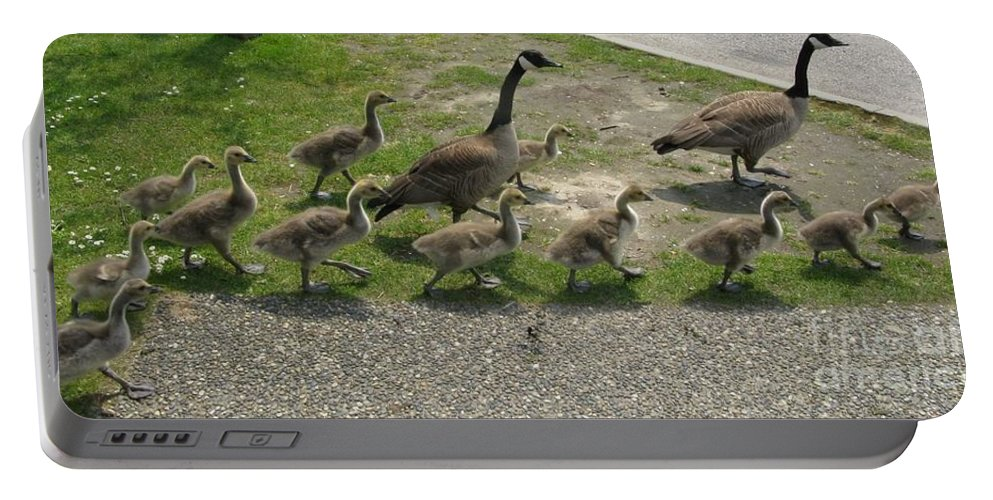 Goose Portable Battery Charger featuring the photograph Big Family Crossing The Road by Lena Photo Art