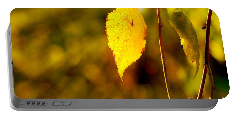 Fall Portable Battery Charger featuring the photograph Birch Leaves by Dariusz Gudowicz