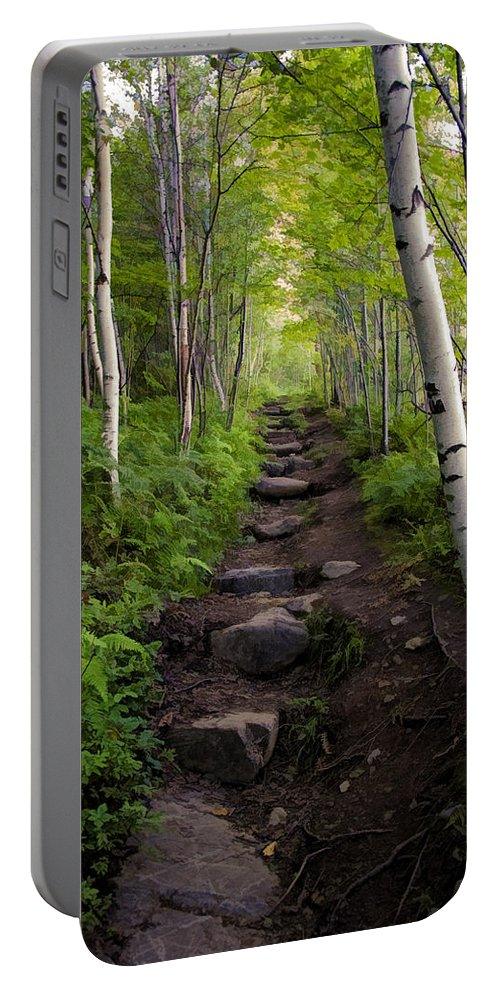 Hike Portable Battery Charger featuring the photograph Birch Woods Hike by Donna Doherty