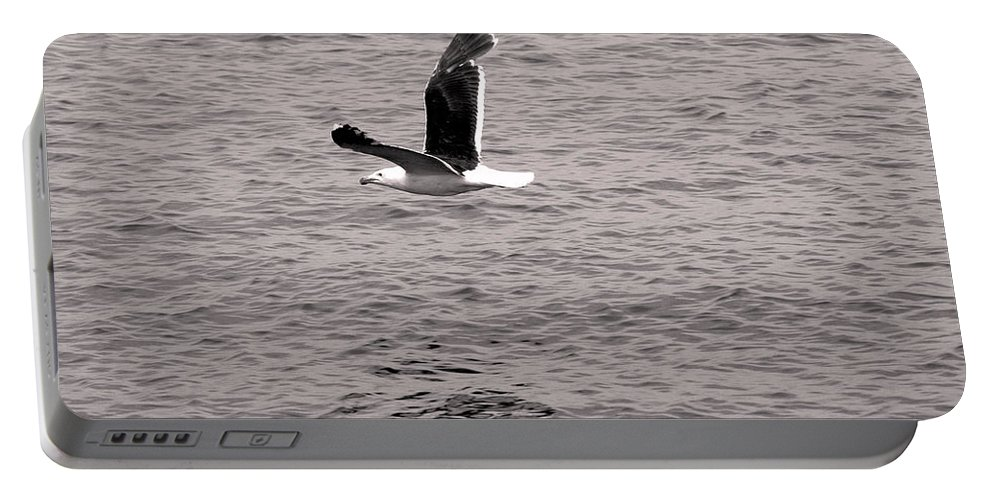 Sea Portable Battery Charger featuring the photograph Bird Bw by Pablo Rosales