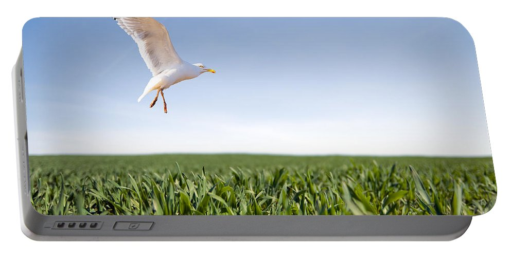 Arms Portable Battery Charger featuring the photograph Bird Flying Over Green Grass by Michal Bednarek