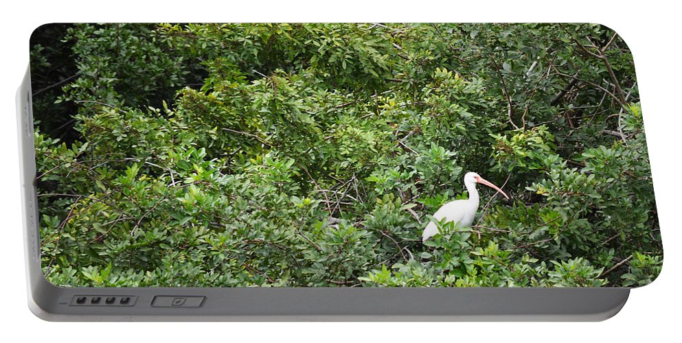 Florida Portable Battery Charger featuring the photograph Bird In Bush by Linda Kerkau