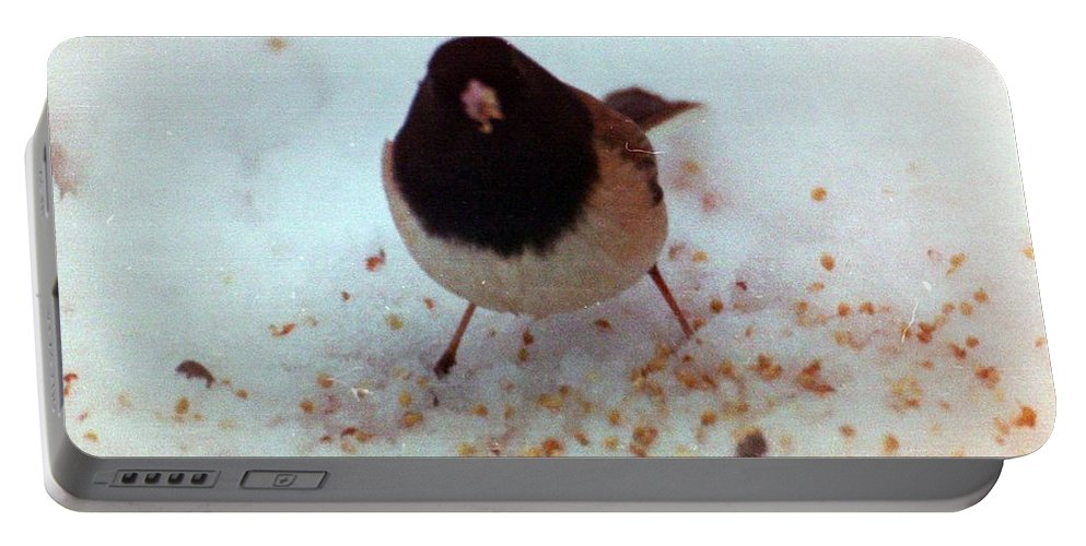 Birds Portable Battery Charger featuring the photograph Bird In Snow by Karl Rose