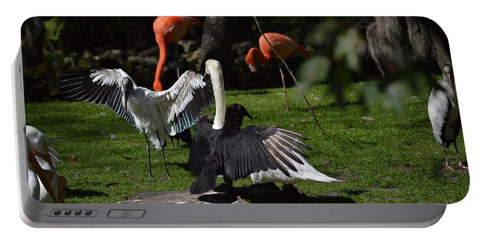 Bird Portable Battery Charger featuring the photograph Birds Gather by Linda Kerkau