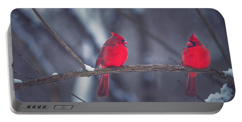 Cardinal Portable Battery Charger featuring the photograph Birds Of A Feather by Carrie Ann Grippo-Pike