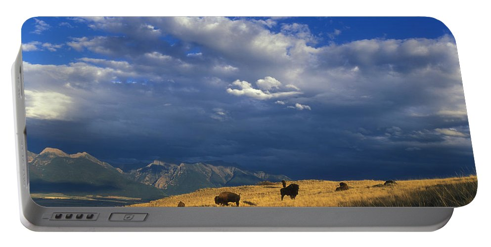 Ryan Hagerty Portable Battery Charger featuring the painting Bison Back From The Brink by Ryan Hagerty