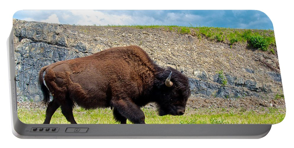 Bison Portable Battery Charger featuring the photograph Bison Plodding Along On Alaska Highway-bc-canada by Ruth Hager