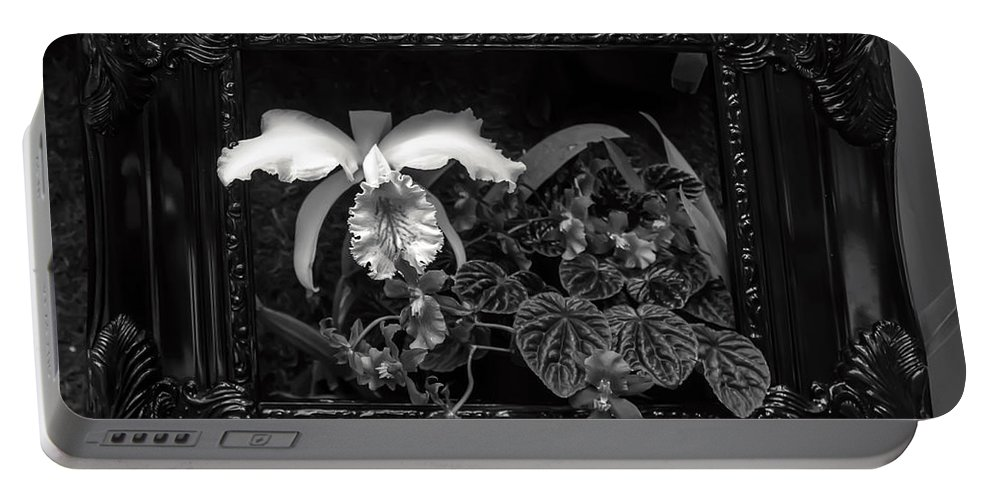View Portable Battery Charger featuring the photograph Black And White Orchid Flowers Growing Through Old Wooden Pictur by Alex Grichenko