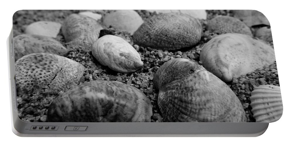 Sea Portable Battery Charger featuring the photograph Black And White Seashells by Andrea Anderegg