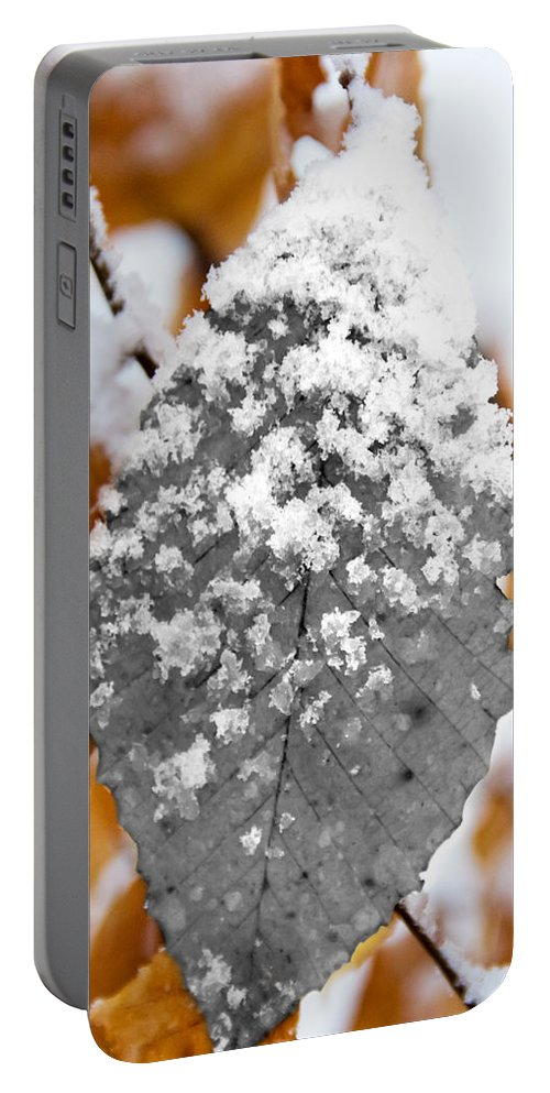 Black And White Snow Leaf Portable Battery Charger featuring the photograph Black And White Snow Leaf by Jemmy Archer