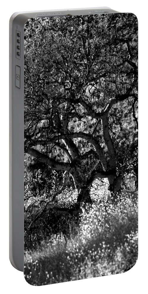 Trees Portable Battery Charger featuring the photograph Black And White Trees by Deprise Brescia