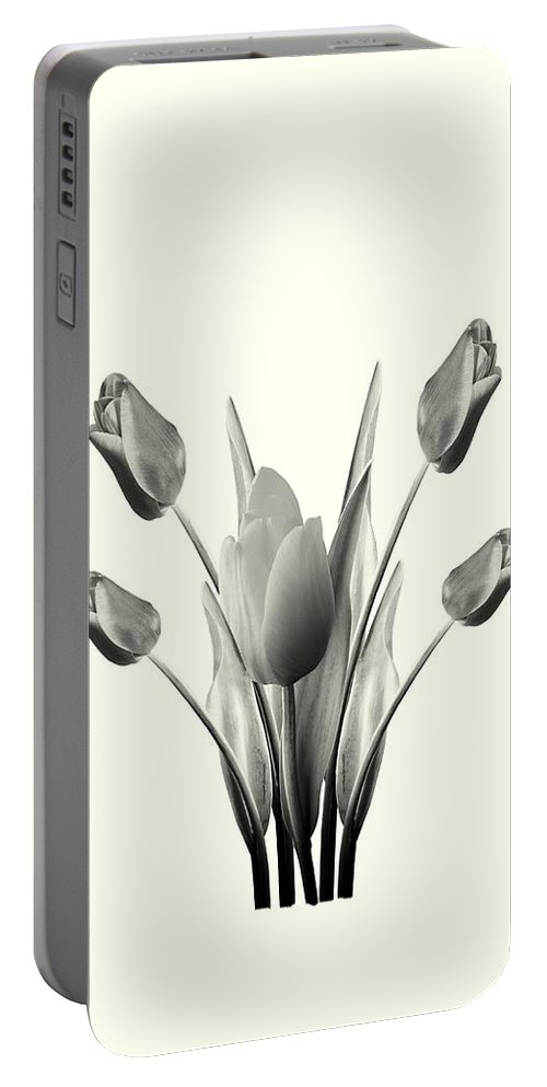 Tulips Portable Battery Charger featuring the digital art Black And White Tulips Drawing by David Dehner