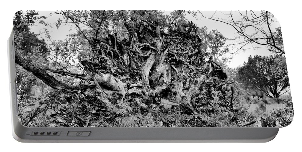 Wildflowers Portable Battery Charger featuring the photograph Black And White Uprooted Tree by Douglas Barnard