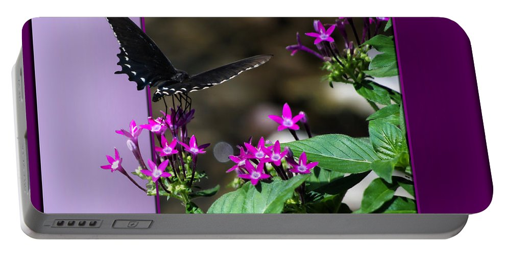 Butterfly Portable Battery Charger featuring the photograph Black Butterfly 07 by Thomas Woolworth