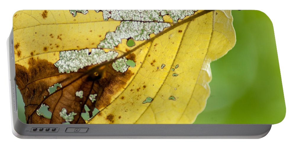Optical Playground By Mp Ray Portable Battery Charger featuring the photograph Black Cherry Leaf by Optical Playground By MP Ray