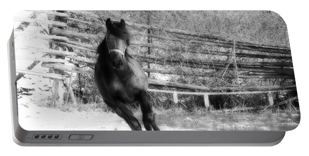 Animal Portable Battery Charger featuring the photograph Black Diamond Jubilee 2 by Davandra Cribbie