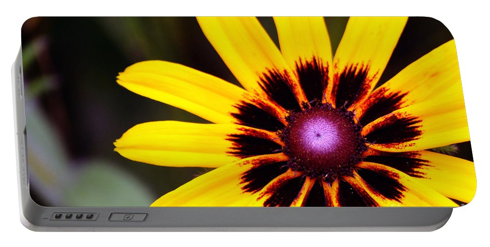 Yellow Portable Battery Charger featuring the photograph Black Eyed Susan 3 by Kevin Fortier