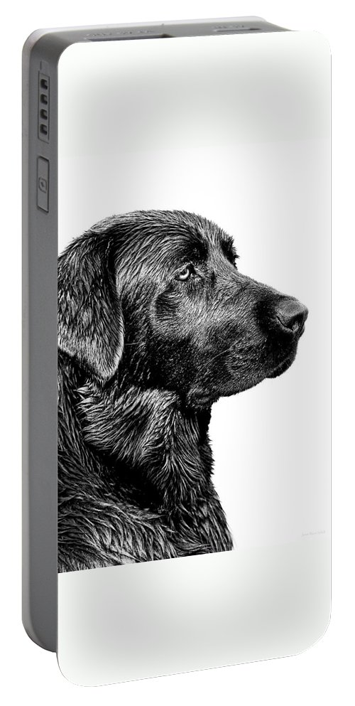 Labrador Retriever Portable Battery Charger featuring the photograph Black Labrador Retriever Dog Monochrome by Jennie Marie Schell