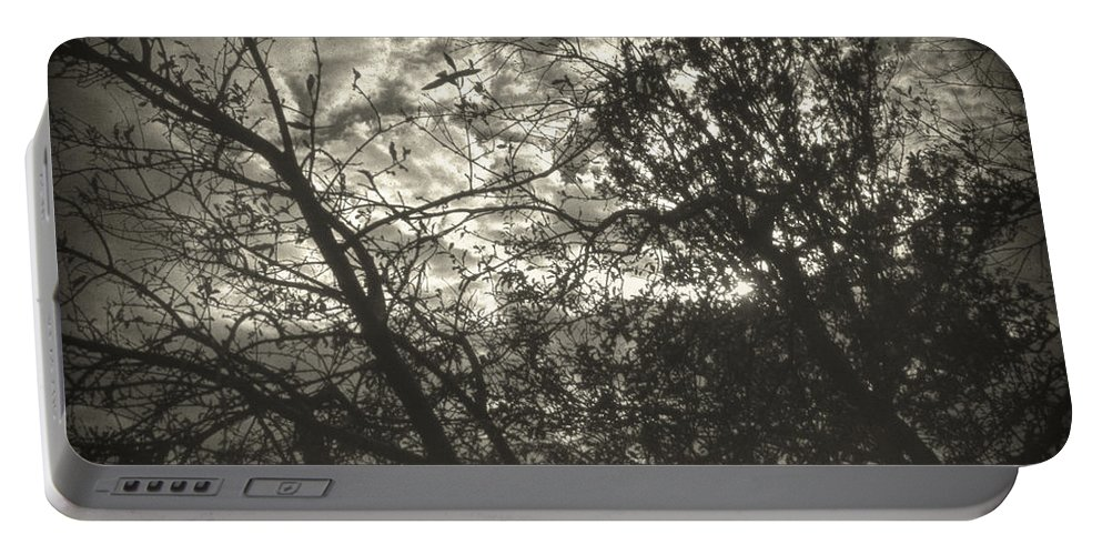 Nature Portable Battery Charger featuring the photograph Bleak by Zapista