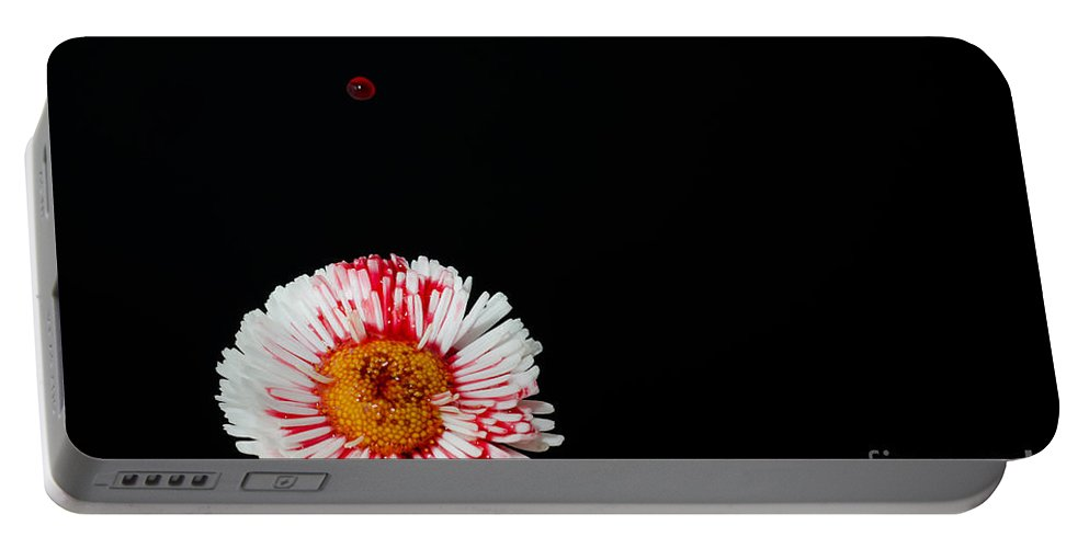 Flower Portable Battery Charger featuring the photograph Bleeding Flower by Mats Silvan