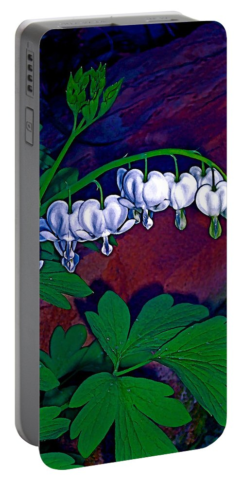 Flower Portable Battery Charger featuring the photograph Bleeding Heart 1 by Pamela Cooper