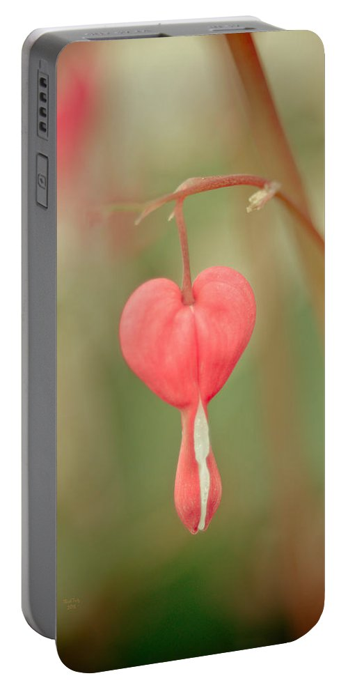 Heart Portable Battery Charger featuring the mixed media Bleeding Heart by Trish Tritz