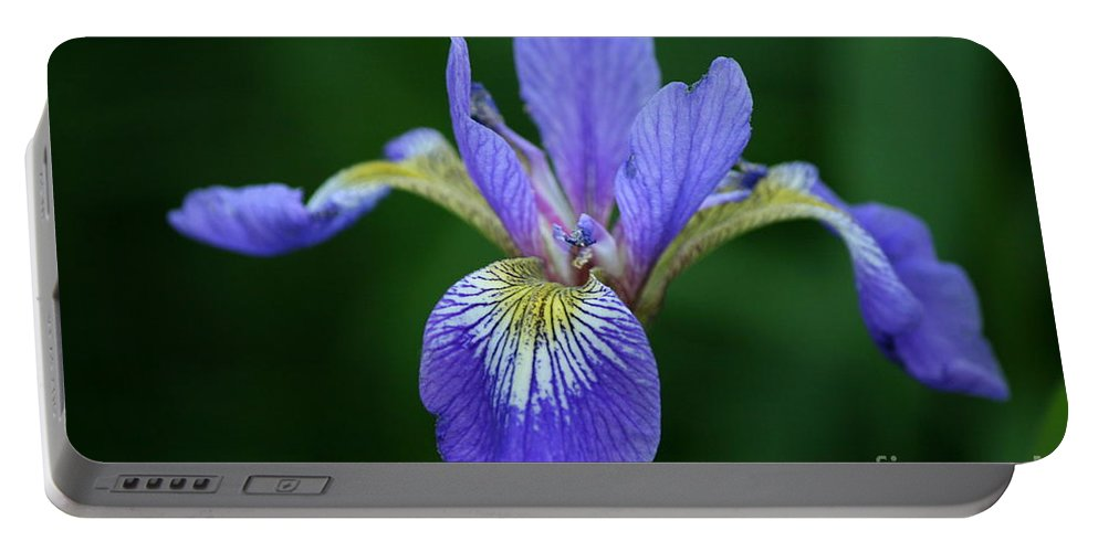 Blood Iris Portable Battery Charger featuring the photograph Blood Iris by Neal Eslinger