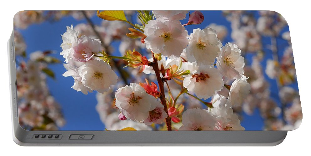 Sky Portable Battery Charger featuring the photograph Blooming Trees by TouTouke A Y