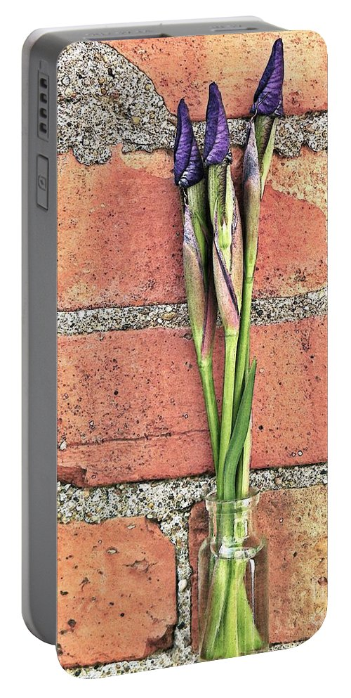 Nature Portable Battery Charger featuring the photograph Blooms For Tomorrow by Chris Berry