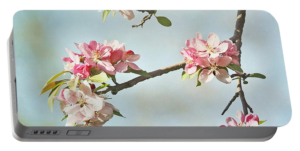 Nature Portable Battery Charger featuring the photograph Blossom Branch by Kim Hojnacki