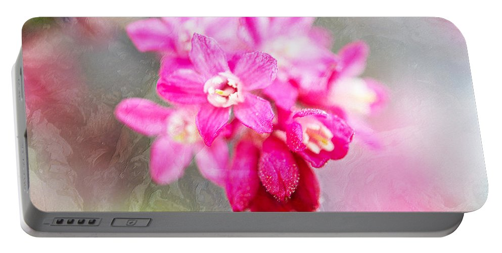 Blossoms Portable Battery Charger featuring the photograph Blossoms Of Spring - April 2014 by Marie Jamieson