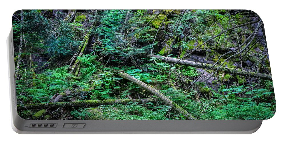 Glacier National Park Portable Battery Charger featuring the photograph Blow Down Glacier National Park by Rich Franco
