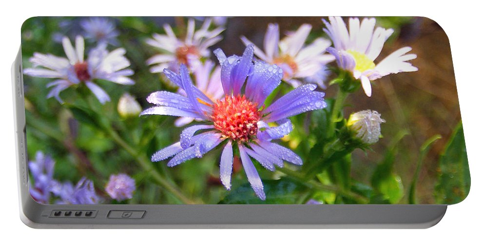 Plants Portable Battery Charger featuring the photograph Blue Asters 3 by Duane McCullough