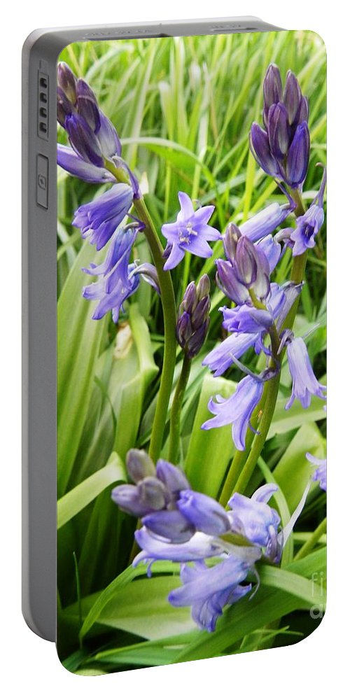 Floral Portable Battery Charger featuring the photograph Blue Bell by Loreta Mickiene